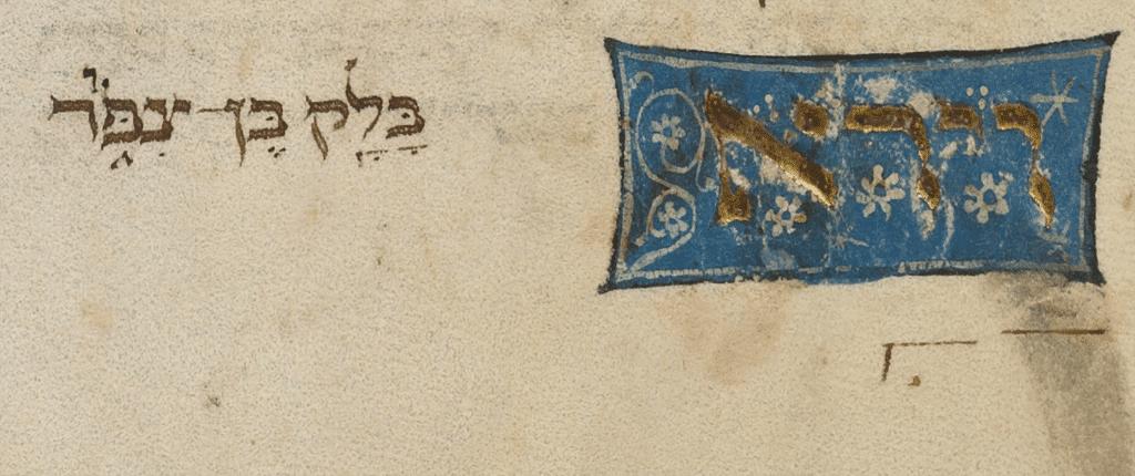 Zohar Balaq